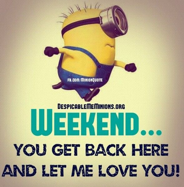 humorous-minions-quotes-022922-pm-friday-31-july-2015-pdt-10-pics