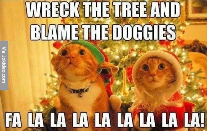 christmas-cat-meme
